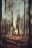 Man on forest path, blurred