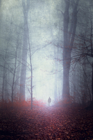 Germany, silhouette of man walking on forest track in fog