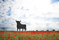 Bull shaped sign in poppy field, Spain, Toledo