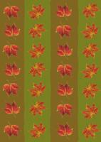 Leaf 20025333159| 写真素材・ストックフォト・画像・イラスト素材|アマナイメージズ