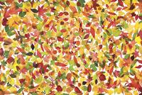 Leaf 20025338866| 写真素材・ストックフォト・画像・イラスト素材|アマナイメージズ