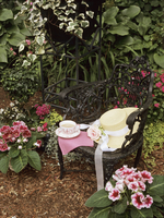 Gardens: Romantic, sitting area, black wrought iron chair set up with a ladies straw hat and cup of tea, surrounded by vines and 20025340960| 写真素材・ストックフォト・画像・イラスト素材|アマナイメージズ