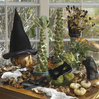 HALLOWEEN SET UP: Brussel sprout trees, lily pods, black cat mask on green hedge apples, white pumpkins, witch hat, spiders, fal