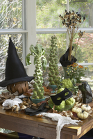 HALLOWEEN SET UP: Brussel sprout trees, lily pods, black cat mask on green hedge apples, white pumpkins, witch hat, spiders, fal 20025340974| 写真素材・ストックフォト・画像・イラスト素材|アマナイメージズ