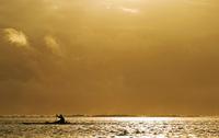 Silhouette of a person rowing a boat, Tahiti, French Polynesia 20025341380| 写真素材・ストックフォト・画像・イラスト素材|アマナイメージズ