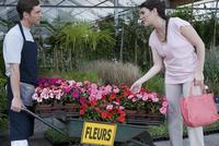 Customer buying potted plants 20025341673  写真素材・ストックフォト・画像・イラスト素材 アマナイメージズ