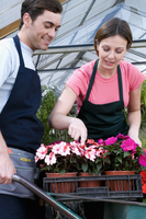 Man and a woman working in a greenhouse