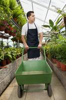 Man pushing a cart in a greenhouse 20025341724| 写真素材・ストックフォト・画像・イラスト素材|アマナイメージズ