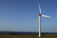 Wind turbines in a field,Pakini Nui Wind Project,South Point,Big Island,Hawaii,USA