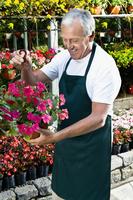 Man holding a hanging basket in a greenhouse 20025341762| 写真素材・ストックフォト・画像・イラスト素材|アマナイメージズ
