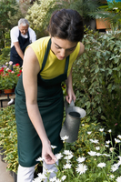 Woman holding a watering can in a greenhouse 20025341837| 写真素材・ストックフォト・画像・イラスト素材|アマナイメージズ