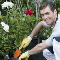 Man working in a greenhouse 20025341851| 写真素材・ストックフォト・画像・イラスト素材|アマナイメージズ