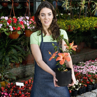 Woman holding a potted plant in a greenhouse 20025341854| 写真素材・ストックフォト・画像・イラスト素材|アマナイメージズ