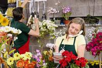 Female florist talking on the phone 20025341866| 写真素材・ストックフォト・画像・イラスト素材|アマナイメージズ