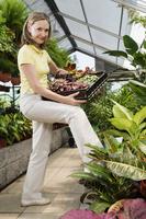 Woman carrying a tray of plants 20025341882| 写真素材・ストックフォト・画像・イラスト素材|アマナイメージズ