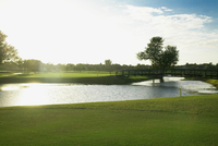 Pond in a golf course,Biltmore Golf Course,Coral Gables,Florida,USA