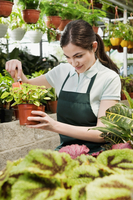 Woman working in a greenhouse and smiling 20025341968| 写真素材・ストックフォト・画像・イラスト素材|アマナイメージズ
