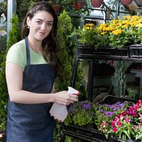 Woman spraying water on flowers in a greenhouse 20025341993| 写真素材・ストックフォト・画像・イラスト素材|アマナイメージズ