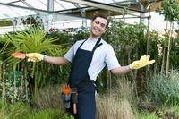 Man working in a greenhouse 20025342009| 写真素材・ストックフォト・画像・イラスト素材|アマナイメージズ