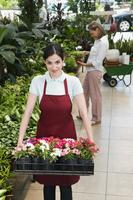 Woman carrying a tray of plants 20025342031| 写真素材・ストックフォト・画像・イラスト素材|アマナイメージズ