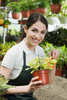 Woman holding a potted plant in a greenhouse 20025342052| 写真素材・ストックフォト・画像・イラスト素材|アマナイメージズ
