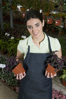 Woman holding potted plants in a greenhouse 20025342139| 写真素材・ストックフォト・画像・イラスト素材|アマナイメージズ