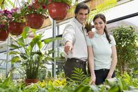 Couple choosing plants in a greenhouse 20025342146| 写真素材・ストックフォト・画像・イラスト素材|アマナイメージズ