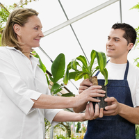 Planter giving a plant to a customer in a greenhouse
