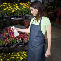 Woman spraying water on flowers in a greenhouse 20025342160| 写真素材・ストックフォト・画像・イラスト素材|アマナイメージズ