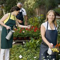 Two women with a man working in a garden 20025342179| 写真素材・ストックフォト・画像・イラスト素材|アマナイメージズ