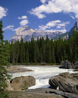 Rocks and trees beside a river with the Rocky Mountains in the background, British Columbia, Canada, North America