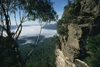 View from the Three Sisters of Jamison valley under fog, Blue Mountains National Park, UNESCO World Heritage Site, New South Wal