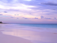 Pink Sands Beach at dusk with a person in the distance, Harbour Island, Eleuthera, The Bahamas, West Indies, Atlantic, Central A 20025347543| 写真素材・ストックフォト・画像・イラスト素材|アマナイメージズ