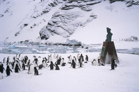 Point Wild, where Shackleton's men were rescued in 1916, one of the most historic locations in the Antarctic, Elephant Island, A
