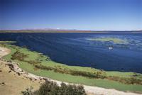 View over Lake Titicaca, near Puno, Peru, South America