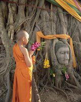 Novice monk with offering of flowers, and Buddha head in Wat Phra Mahathat, Ayuthaya (Ayutthaya) Historical Park, Ayuthaya (Ayut 20025347819| 写真素材・ストックフォト・画像・イラスト素材|アマナイメージズ