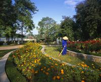 Central City Park, Hanoi, Vietnam, Indochina, South East Asia, Asia 20025347869| 写真素材・ストックフォト・画像・イラスト素材|アマナイメージズ