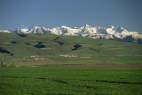 Cooperative farm near Lake Issyk-Kul in the Tien Shan mountain range in Kirghizstan, Central Asia, Asia