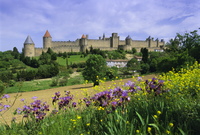 View of the fortified city, Carcassonne, UNESCO World Heritage Site, Languedoc, France, Europe