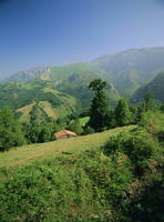 Sierra Dobros, Picos de Europa mountains, (Green Spain), Asturias, Spain