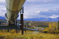 Trans Alaska oil pipeline across taiga through Alaskan Range carried on insulated ground piles, Alaska, United States of America