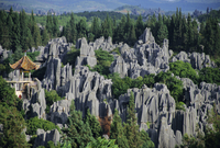 Limestone pinnacles in Shilin, Stone Forest, at Lunan, Yunnan, China
