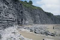 Sedimentary rocks, blue lias, shale-limestone sequences, Lyme Regis, Jurassic coast, UNESCO World Heritage Site, Dorset, England