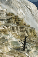 Travertine calcite deposits on the Canary Spring terraces, Mammoth Hot Springs and Terraces, Yellowstone National Park, UNESCO W