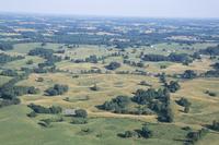 Sinkhole Plain, polygonal doline karst, near Mammoth Cave, Kentucky, United States of America, North America