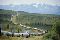 The Trans Alaska Oil Pipeline running on refridgerated support to stop oil heat melting the permafrost,Mount Hayes (4116m) and t