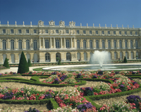 Le Parterre du Midi and fountain in front of the Chateau of Versailles, UNESCO World Heritage Site, Ile de France, France, Europ