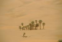 Ubari Sand Sea, Libya, Norrth Africa 20025348235| 写真素材・ストックフォト・画像・イラスト素材|アマナイメージズ