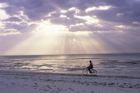 Fisherman cycling along the beach near Bweju against dramatic sky, island of Zanzibar, Tanzania, East Africa, Africa 20025348297| 写真素材・ストックフォト・画像・イラスト素材|アマナイメージズ