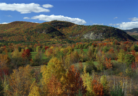 Aerial view over woodland and rolling hills in fall colours, White Mountain National Park, New Hampshire, New England, United St